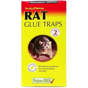 tienda de trampas ratones